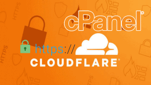 cloudflare ücretli ssl i cpanel e tanıtmak